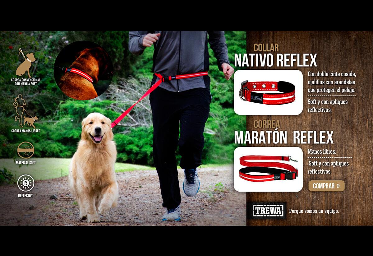 Collar nativo reflex Trewa. Campaña