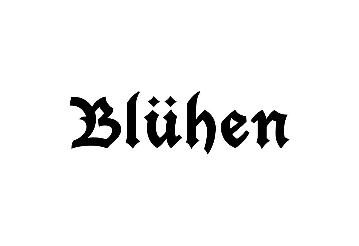 bluhen-logotipo