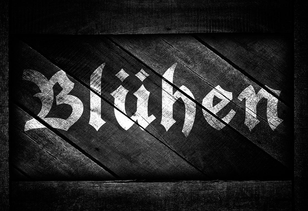 bluhen-rustic-logo